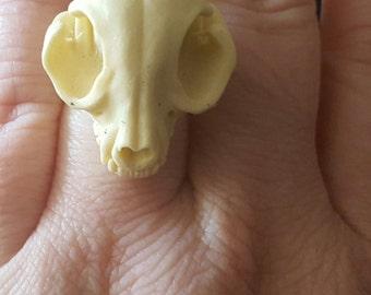 Skull, Skull ring, Taxidermy, Faux skull, Resin skull, Adjustable ring, Horror, Horror Ring, Gifts for her