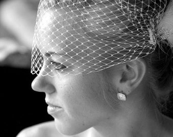 Birdcage Veil in Ivory, White or Black Russian/French Netting Bandeau Style