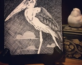 "Original 4"" x 4"" pen and ink crosshatch drawing: 'Survey' (Marabou stork, clouds)"