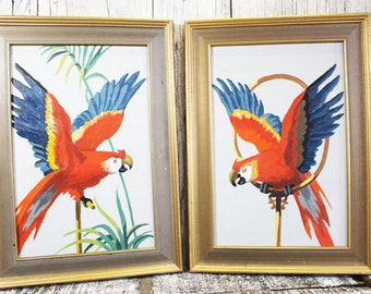 Paint By Number Parrots, 2 Paintings, Framed Art