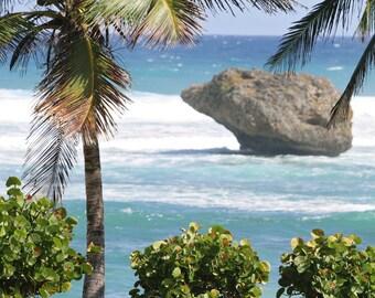 Tropical Decor - Barbados Photograph - Island Photography - Beach Wall Art - Caribbean Sea Photo - Blue and Green Print - Palm Tree