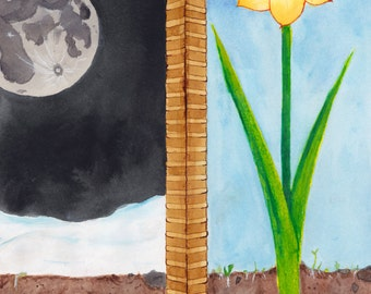 march to may - tulip painting - illustration print - flower art - spring bulb