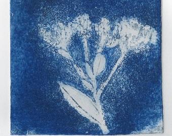 Flower in the wind  Original Etching,wild flowers, blue flower
