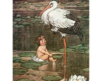 Stork and Baby Greeting Card - Birth Announcement -  W. Heath Robinson
