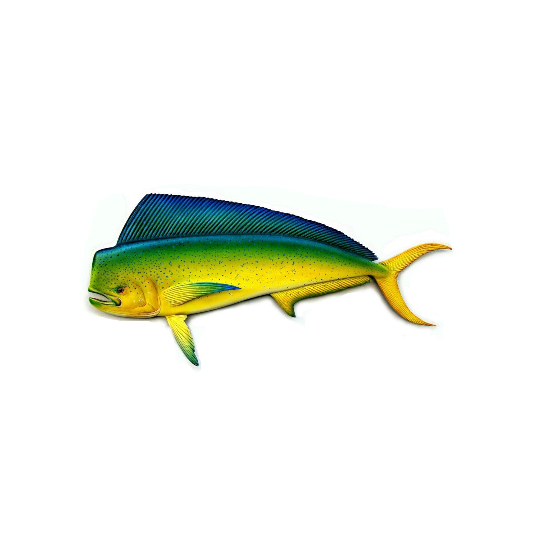 Mahi mahi art sculpture 36 39 39 wood carving wood fish for Mahi mahi fish