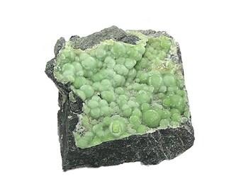 Wavellite Green Crystalline Botryoidal Sparkly Druzy Mineral on Rock Matrix Rare Arkansas display Geo specimen Rockhound Earth Treasure Gem