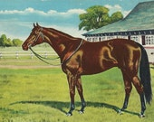 Citation at Three - Vintage 1950s Artist-attributed Triple Crown Winning Race Horse Postcard