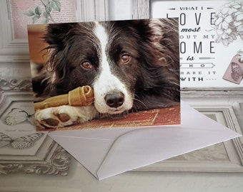 Border Collie Dog & Bone Birthday Blank Greetings Photo Card - Made in the UK