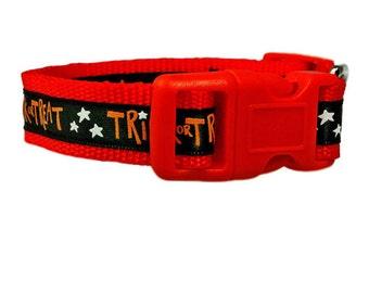 "Halloween Dog Collar 5/8"" Small Orange Dog Collar"