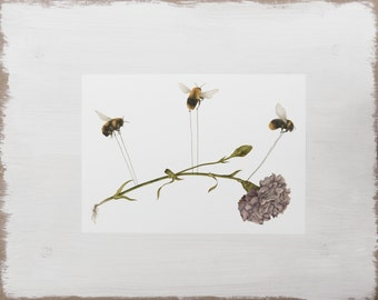 Floral Bee Print -- Animal Print // Insect Print // Purple Flower Watercolour Illustration Limited Edition Art
