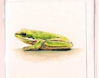 Eastern Sedge Frog Watercolour Mini Square Greeting Card