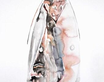 original watercolor painting . bogong moth