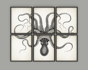 Delicieux Octopus Wall Art Poster Set Of 6   Octopus Ink Drawing Art Print   Octopus  Poster