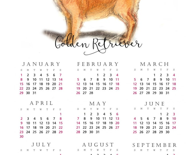 Golden Retriever 2017 yearly calendar