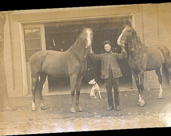 Real Photo Large Horses 1907 Postcard