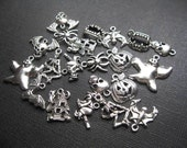 BIG Halloween Charm Collection in Silver Tone - C2432