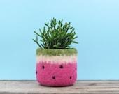 Felt succulent planter / Watermelon vase / summer gift / felted planter / cactus vase / housewarming gift / cabin decor / gift for her