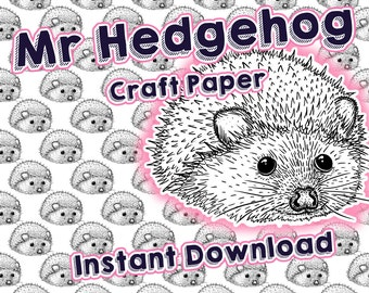 Hedgehog Wrapping Paper Craft Digital Drawn Cute Little Animal Drawing Outline Garden Forest Nature Wildlife Woodland Woods
