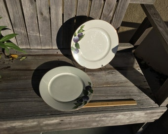 Mikasa Fine China Dinner Plates--  Pattern is called Plum Court- #L3132 - Set of two (2)