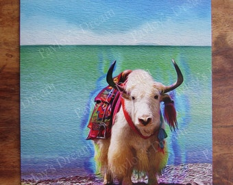 6 Pack Shangri-La Dreamscape - Vibrant Solstice, Holiday, Vacation, Birthday, Invitation or Just Because Card. Adorable Winter Woolly Yak.