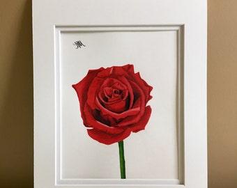 Original pencil drawing, red rose, 11x14
