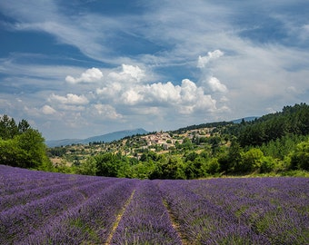 Lavender field in Provence, Hilltop town Provence France Photography, Rural France, Provence Photography, Summer in Provence, Fine Art Print