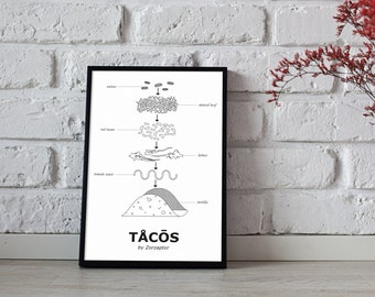 Printed design tacos - illustration and decoration