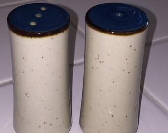 Elegant Japan Salt and Pepper Shakers - Blue gray black