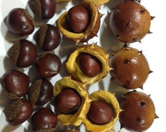 20 Artificial Chestnuts Fake Chestnuts Craft Chestnuts Autumn Crafts Decorative Chestnuts Centerpiece Bouquet