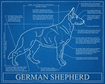 German Shepherd Blueprint Elevation / German Shepherd Art / German Shepherd Wall Art / German Shepherd Gift / German Shepherd Print