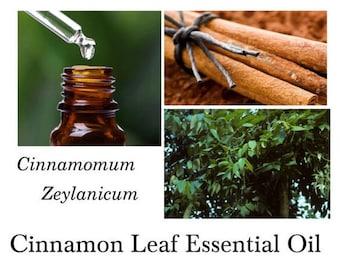 Cinnamon Leaf Essential Oil, Cinnamon Essential Oil,  Cinnamomum zeylanicum – 100% Pure Authentic Cinnamon Leaf Essential EO