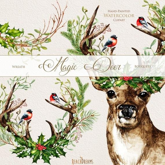 Christmas Deer Watercolor Deers Antlers Bullfinches Hand