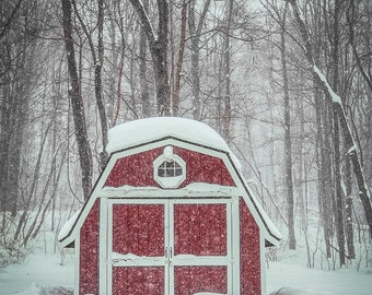 Michigan Photograph Print - Michigan, Shed, Barn, Snow, Winter, Forest, Woods, Winter Woods, Winter is Coming