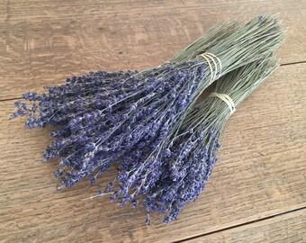 Dried Lavender Bunch Bundle set of 3 Preserved Lavender