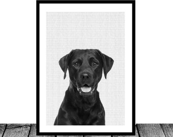Black Labrador Retriever Print, Instant download, Dog animal print, Nursery wall art, Nursery printable art, Nursery decor, Dog wall decor