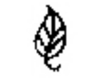 Design Stamp, Alternative, Leaf | PUN-107.11