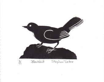 Signed, Limited Edition Print of a Blackbird