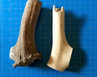 100% Natural Found Elk Shed Antler Dog Treats #11 - Large (2016)