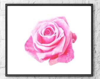 Pink Rose Art Print Rose Poster Pink Rose Poster Rose Watercolor Rose Home Decor Rose gift idea Rose Artwork