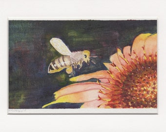 Busy Bee and Blossom