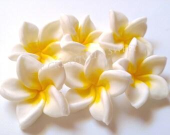 12 pcs Plumeria Frangipani Tropical Aloha Exotic Flowers Edible Gumpaste Fondant Cake Cupcake Cookies toppers