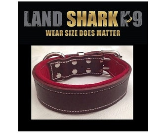 Brown Latigo Leather Dog Collar with Soft Red Suede Padded Inner Lining
