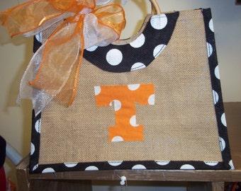 Hand made TN polka dot bag