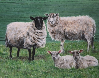 HillArt 'Young Family' Original Sheep Card