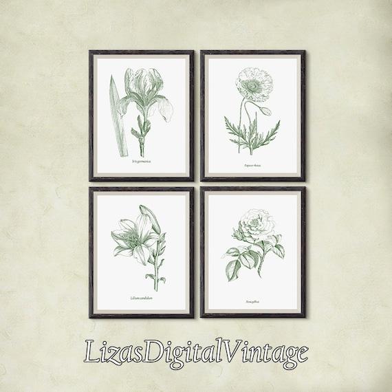 Print set, Instant download printable art, Botanical digital print, 8x10, 11x14, A3, Iris, Poppy, Poppy print, Rose print, Lily print, JPG