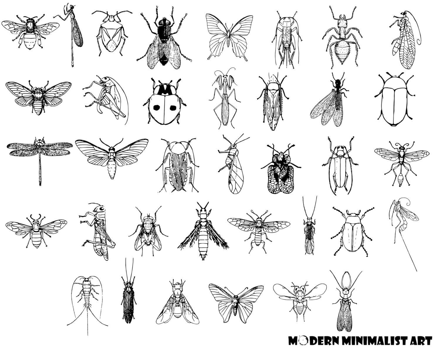 bug clipart black and white. bug clipart black and white\u2013 36 png images white e