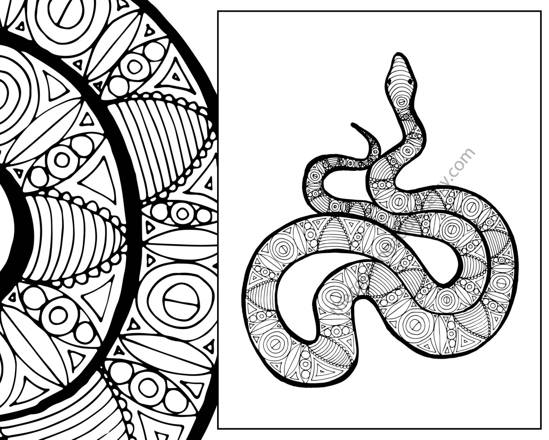 snake coloring sheet animal coloring pdf zentangle adult. Black Bedroom Furniture Sets. Home Design Ideas