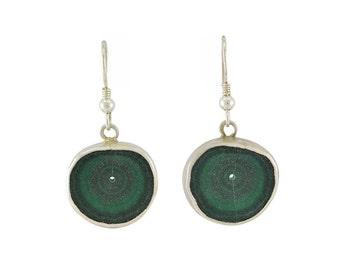 Malachite slice earrings