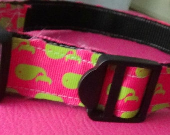 Green & Pink Whale Collar