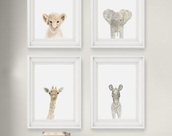 Safari Nursery Prints Set of 4